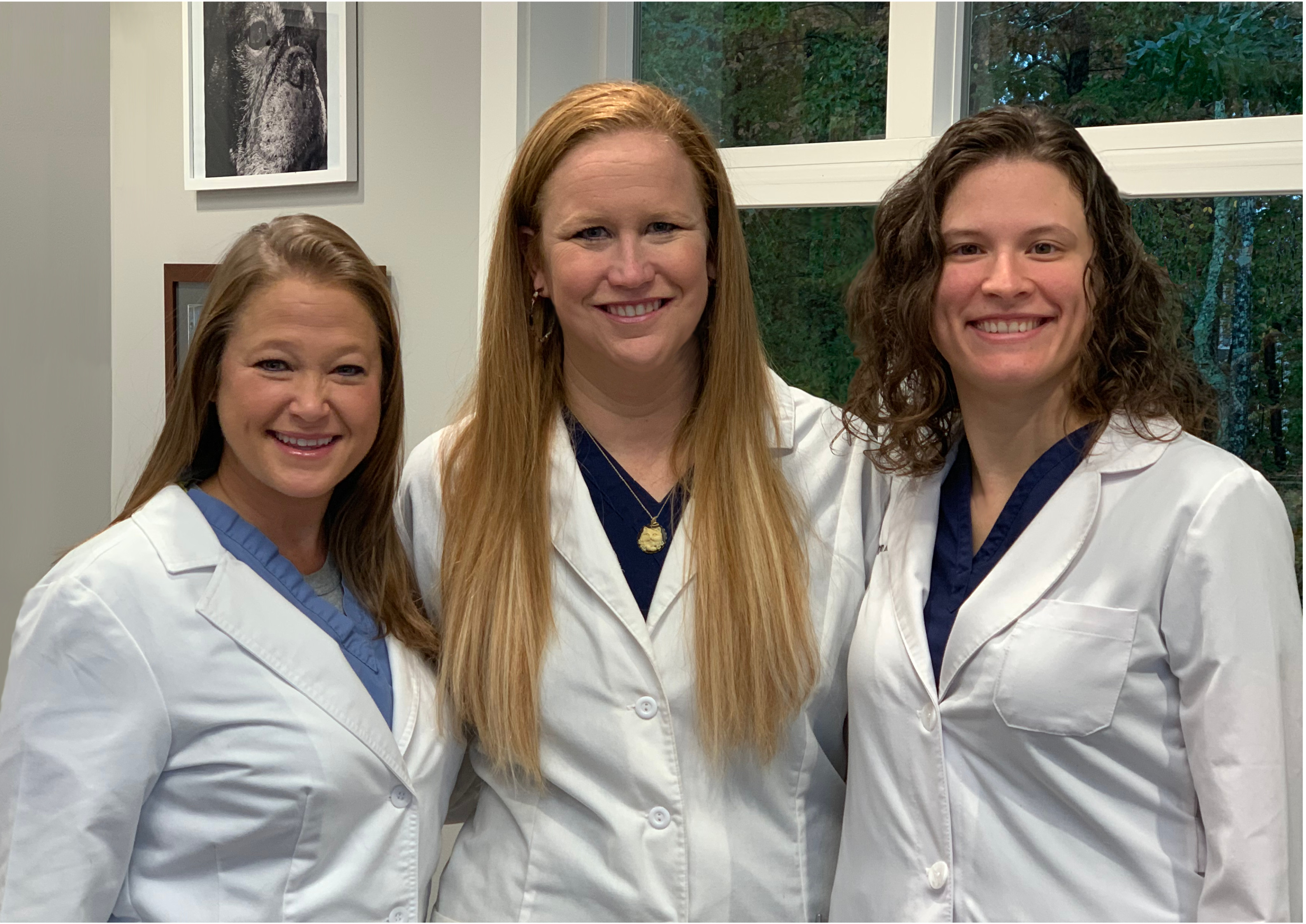 Dr. Melissa Roberts, Dr. Carrie Friedewald, and Dr. Taryn McDonald